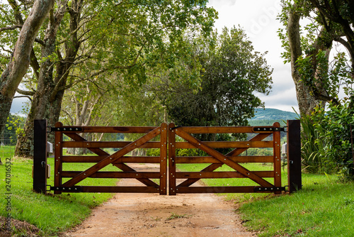 Wooden gates to a tree lined avenue. Fototapete