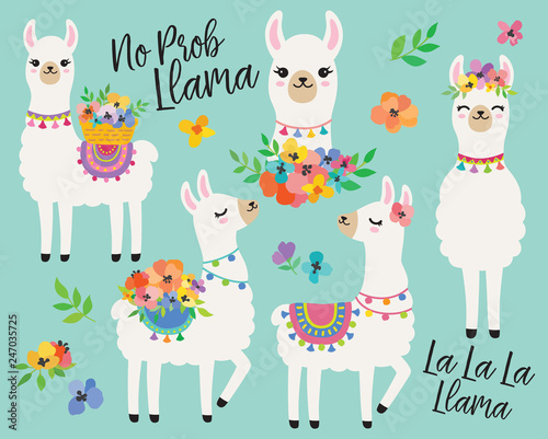 Canvas Print Cute llamas or alpacas with colorful spring flowers hand drawn vector illustration