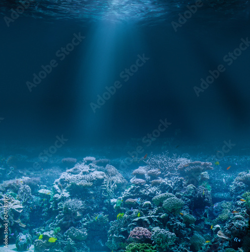 Sea or ocean seabed with coral reef. Underwater view.
