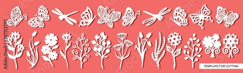 Stampa su Tela Set of twigs, flowers, butterflies and dragonflies