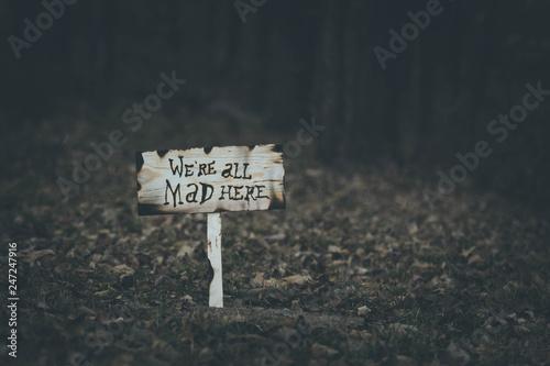Canvas Print Alice in Wonderland- Mad here