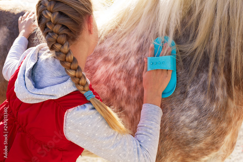 Wallpaper Mural Girl grooming horse  in the outdoors.
