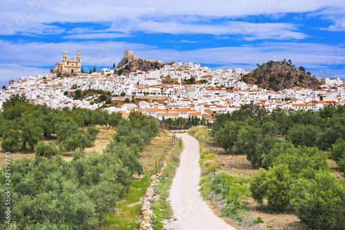 Murais de parede View of Olvera village, one of the beautiful white villages (Pueblos Blancos) of