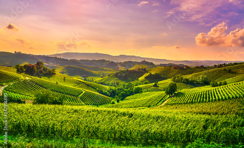 Photo Langhe vineyards view, Castiglione Falletto and La Morra, Piedmont, Italy Europe