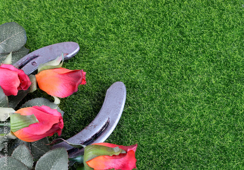 Vászonkép Red silk roses, a horseshoe and artificial green grass for the running of the thoroughbred race called the Kentucky Derby