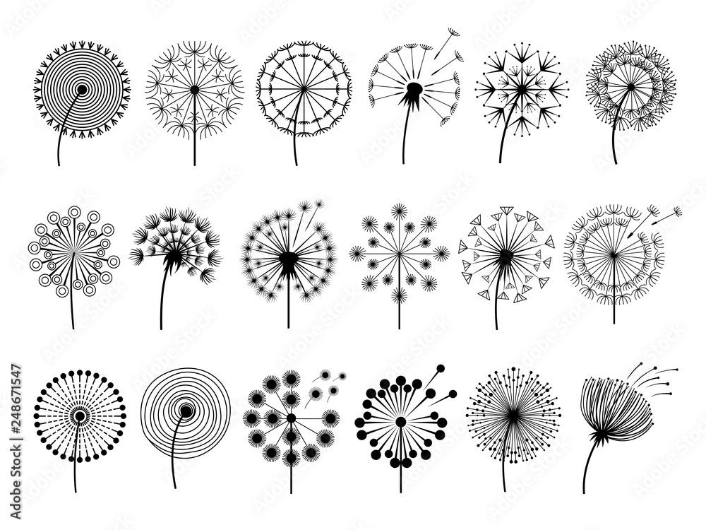 Dandelion silhouettes. Herbal illustrations flowers decoration concept vector botany illustrations. Black silhouette of summer flower dandelion <span>plik: #248671547   autor: ONYXprj</span>