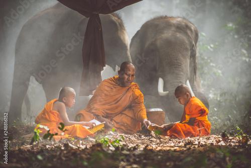 Slika na platnu Thai monks studying in the jungle with elephants