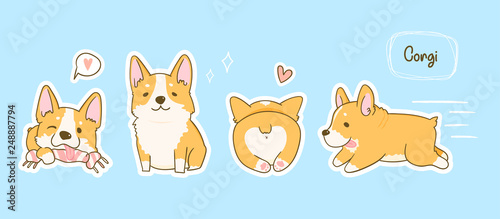 Kawaii playful Corgi dogs in various poses. Hand drawn colored vector set. Pre-made stickers. Blue background. All elements are isolated