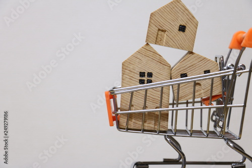 Fotografia, Obraz 家のカートショッピング house cart shopping