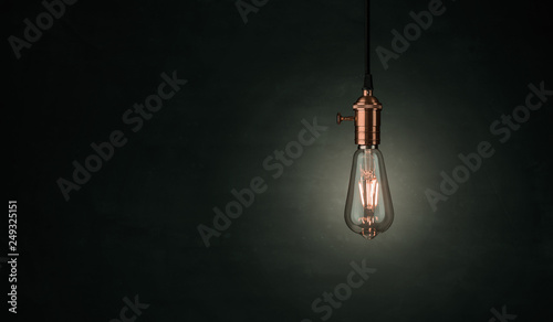 Fotografering Close up of a vintage, Edison lightbulb over dark background with copy space