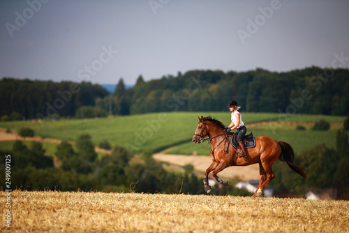 Obraz na płótnie Horsewoman with horse galloping on a stubble field in summer photographed from the front from some distance