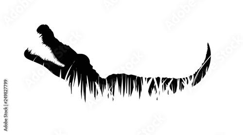 Fotografering Illustration of crocodile icon in the grass