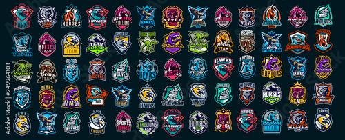 Fotografia Set of animal emblems