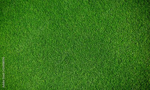 Obraz na plátně Artificial grass background