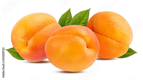 Fotografie, Obraz Fresh apricot isolated on white background with clipping path