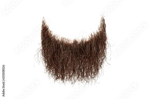 Stampa su Tela Disheveled brown beard isolated on white. Mens fashion
