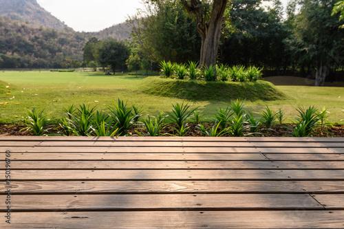 Cuadros en Lienzo Wooden patio with garden on meadow background