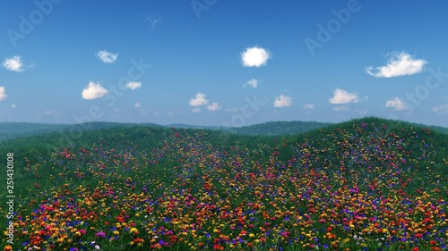Canvas Print flower hills, spring landscape of flowers, flower meadow on the hillside