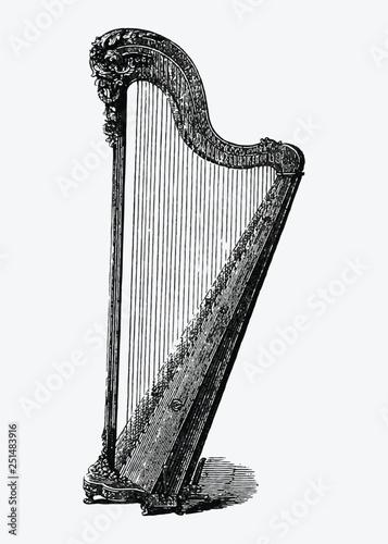 Valokuvatapetti Vintage harp illustration