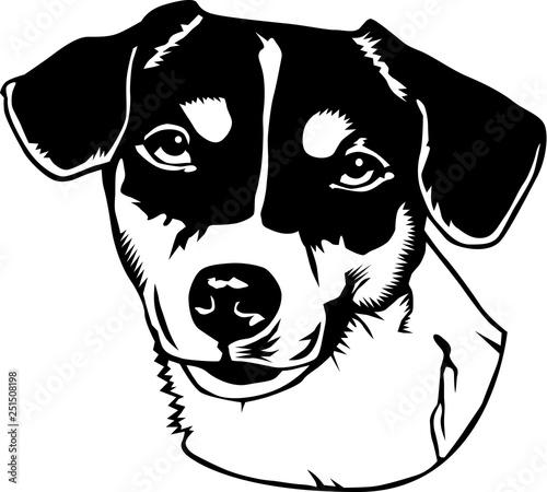 Photo Jack Russell Terrier Vector Illustration