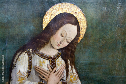 Obraz na plátně Pavia, Italy