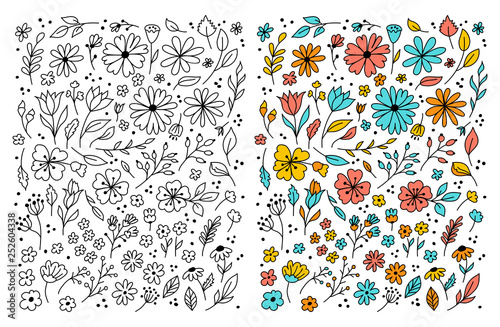 Doodle flowers Hand drawn floral set. Flowers cartoon drawing, coloring floral. Vector illustration