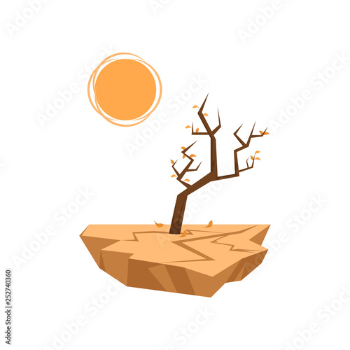 Dead trees sprout in dry soil isolated on white background Poster Mural XXL