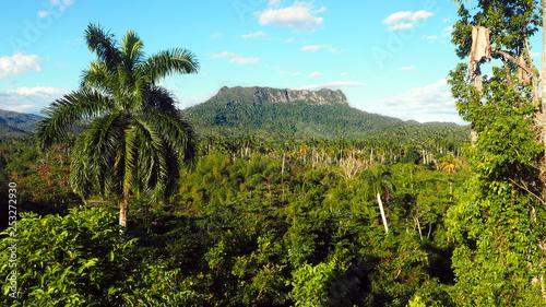 Photo El Yunque Tabletop Mountain Hike Near Baracoa in Cuba, February 2019