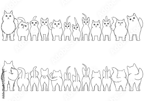 Photo cats line art border set
