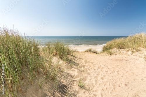 Obraz na płótnie Blick aus den Dünen aufs Meer an der Nordseeküste aud Sylt