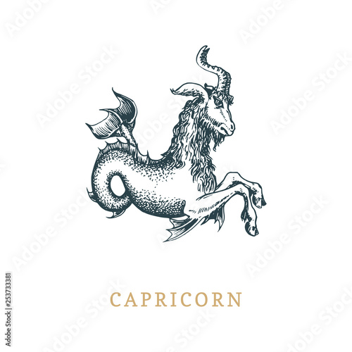 Fotografie, Obraz Capricorn zodiac symbol, hand drawn in engraving style