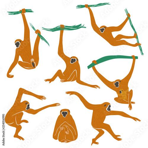 Wallpaper Mural Set Of Funny Gibbon Monkey Icons.