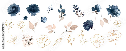 Photo Set watercolor design elements of roses collection garden navy blue flowers, leaves, gold branches, Botanic  illustration isolated on white background