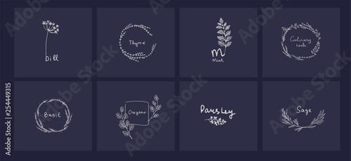 Fotografía Hand drawn set of culinary herb