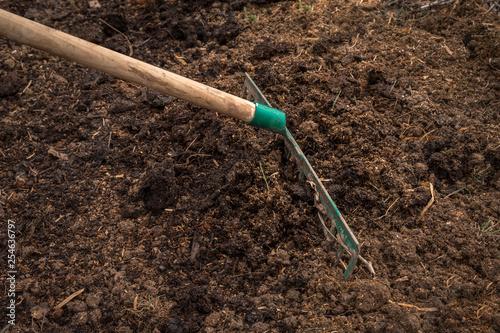 Fotografie, Obraz Worker with rake preparing soil for planting - gardening concept