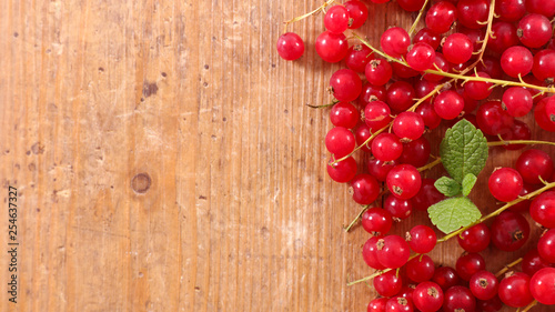 Canvas Print redcurrant branch and leaf
