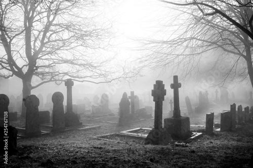 Fotografija scarey grave yard in the mist back and white photograph