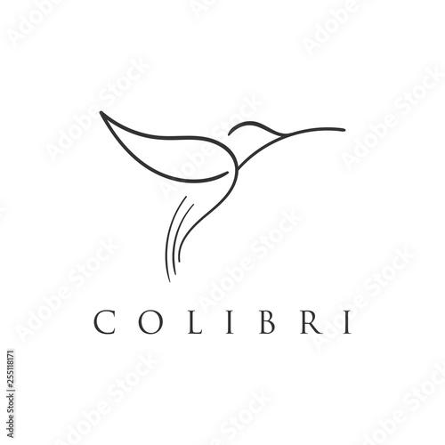 hummingbird line logo icon designs Fototapeta