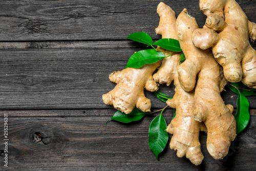 Canvastavla Fresh ginger with leaves.