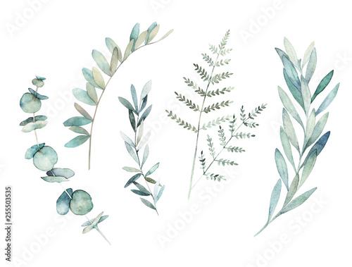 Tableau sur Toile Watercolor greenery set