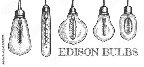 Fotografia, Obraz Collection of various shaped hanging edison bulbs