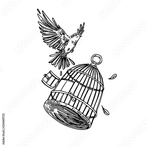 Bird flying out of the cage Fototapet