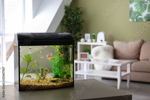 Foto Beautiful aquarium on table in room