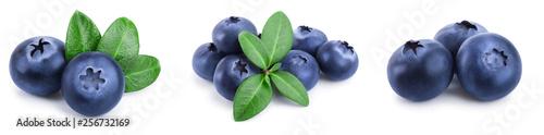 Fototapeta fresh blueberry with leaves isolated on white background closeup