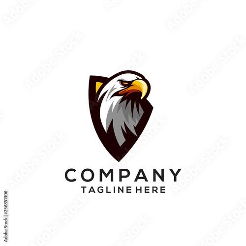 Photo eagle logo design