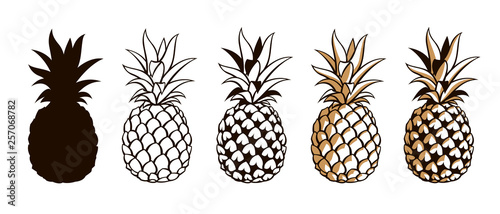 Fotografia collection of pineapple tropical fruits isolated on white background