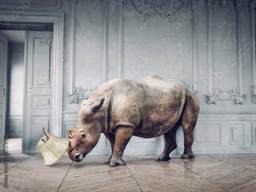 wild rhino in the luxury room Fototapeta