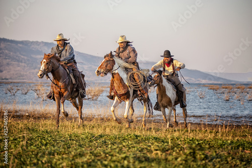 Murais de parede cowboy and horse  at first light,mountain, river and lifestyle with natural ligh