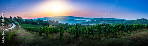 Photo Panorama of Tuscan vineyard covered in fog at the dawn near Castellina in Chiant