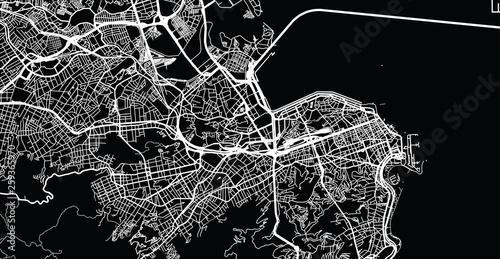 Fotografie, Obraz Urban vector city map of Rio de Janeiro, Brazil